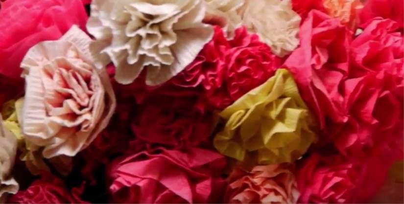 A flor dacasa